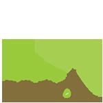 Plant a Seed logo