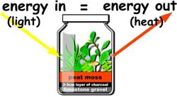 Energy equilibrium