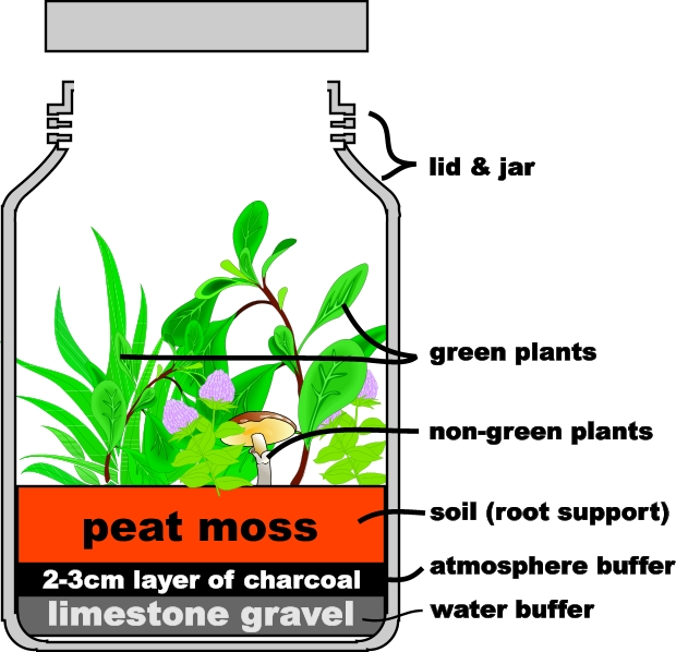 Martian Greenhouse A Micro Ecosystem Student