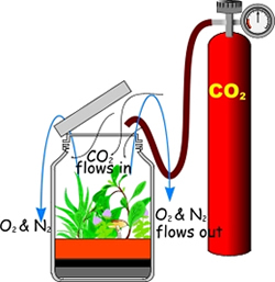Using compressed CO2