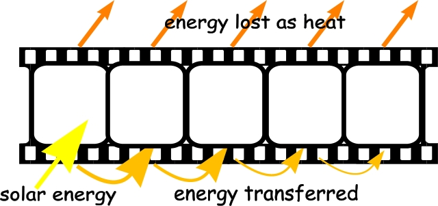 The Energy Trail