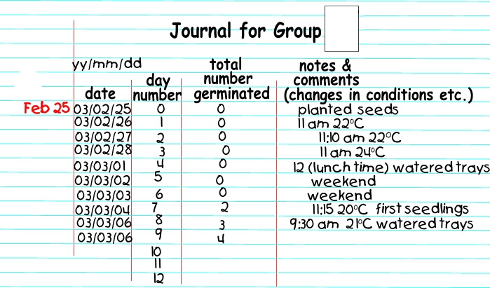 data collection in a journal (filled out)