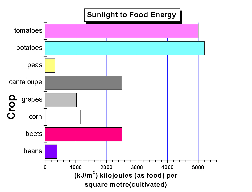 Sunlight to Food Energy