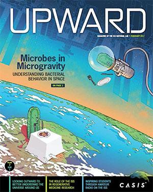 Upward volume 2, issue 1 cover
